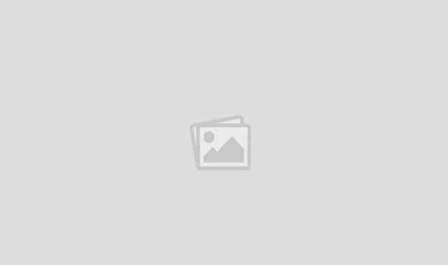 Karaman'da iki şehit ailesine devlet övünç madalyası verildi